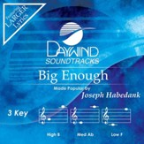 Big Enough [Music Download]