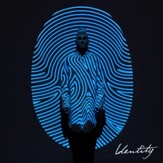 Identity, Deluxe Edition [Music Download]