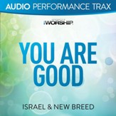 You Are Good [Music Download]