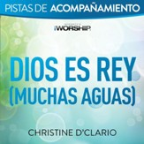 Dios es Rey (Muchas aguas) [Live] [Music Download]
