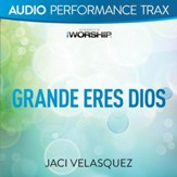 Grande eres Dios [Original Key Trax With Background Vocals] [Music Download]