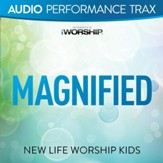 Magnified (feat. Jared Anderson) [Original Key without Background Vocals] [Music Download]