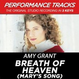 Breath Of Heaven (Mary's Song) [Music Download]
