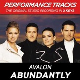 Abundantly (Key-G-A-Premiere Performance Plus w/o Background Vocals) [Music Download]