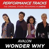 Wonder Why (Premiere Performance Plus Track) [Music Download]
