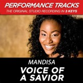 Voice Of A Savior (High Key-Premiere Performance Plus w/o Background Vocals) [Music Download]