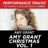 Amy Grant Christmas Vol. 1 (Premiere Performance Plus Track) [Music Download]