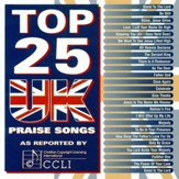 Top 25 UK Praise Songs [Music Download]