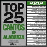 Top 25 Cantos De Alabanza 2012 Edition [Music Download]