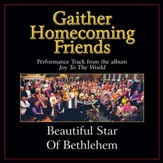 Beautiful Star of Bethlehem Performance Tracks [Music Download]