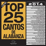 Top 25 Cantos De Alabanza 2014 Edition (2 CDs)