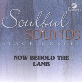 Now Behold The Lamb, Accompaniment CD