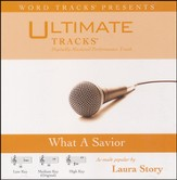 What A Savior (Medium Key Performance Track With Background Vocals) [Music Download]
