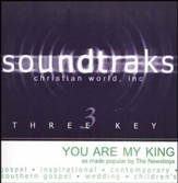You Are My King (Amazing Love), Acc CD