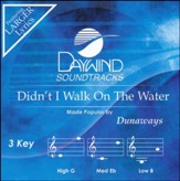 Didn't I Walk On The Water, Acc CD