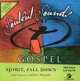 Spirit Fall Down, Accompaniment CD