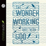 The Wonder-Working God: Seeing the Glory of Jesus in His Miracles - Unabridged Audiobook [Download]