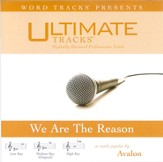 Ultimate Tracks - We Are The Reason - as made popular by Avalon [Performance Track] [Music Download]