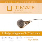 Ultimate Tracks - I Pledge Allegiance To The Lamb - as made popular by Ray Boltz [Performance Track] [Music Download]
