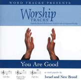 You Are Good - Medium key performance track w/ background vocals [Music Download]