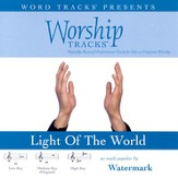 Worship Tracks - Light Of The World - as made popular by Watermark [Performance Track] [Music Download]