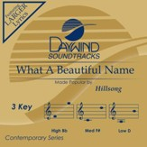 What A Beautiful Name [Music Download]