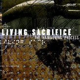 The Hammering Process [Music Download]