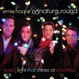 Every Light That Shines At Christmas [Music Download]