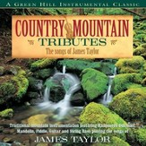 Country Mountain Tributes: The Songs Of James Taylor [Music Download]