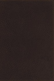 Imitation Leather Brown Large Print Thumb Index