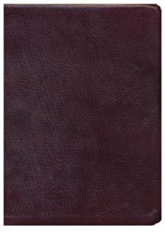Genuine Leather Burgundy Thumb Index