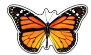Monarch Butterfly Discovery Mini Classic Accents Pack of 36