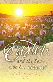 Easter and the Son (Psalm 72:19) Bulletins, 100