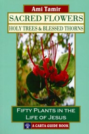 Sacred Flowers-Holy Trees & Blessed Thorns: Fifty Plants in the Life of Jesus