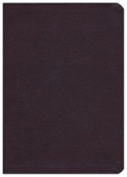 Bonded Leather Burgundy Book Red Letter