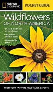 National Geographic Pocket Guide to Wildflowers of North America  -     By: National Geographic