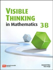 Visible Thinking in Mathematics 3B
