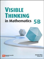 Visible Thinking in Mathematics 5B