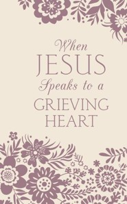 When Jesus Speaks to a Grieving Heart  -     By: Janice Thompson