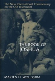 Book of Joshua: New International Commentary on the Old Testament (NICOT)