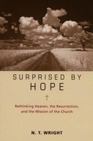 Surprised by Hope, Participant's Guide