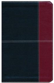 Imitation Leather Black / Burgundy Book Thumb Index