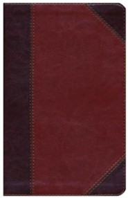 Imitation Leather Brown Book Classic