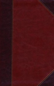 Imitation Leather Brown Book Thumb Index Classic