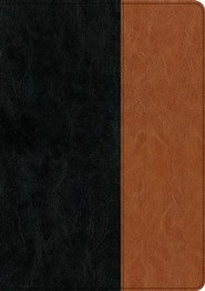 Imitation Leather Black / Brown Large Print Book Black Letter