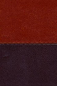 Imitation Leather Brown / Tan Large Print Book