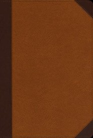 Imitation Leather Tan / Brown Large Print Book