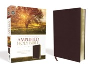 Bonded Leather Burgundy Book