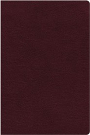Bonded Leather Burgundy Large Print Thumb Index