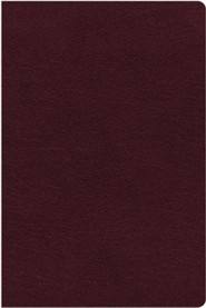 Bonded Leather Burgundy Book Thumb Index